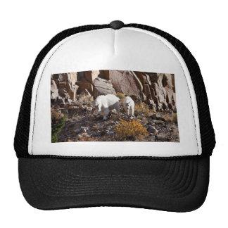 Mountain Goat Trucker Hat