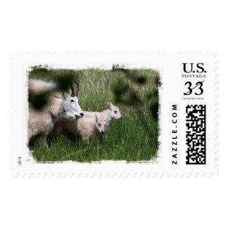 Mountain Goat Twins Postage