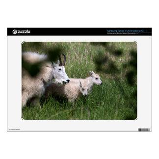 Mountain Goat Twins Samsung Chromebook Decal