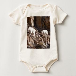 Mountain Goats Creeper