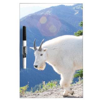 Mountain Goats Dry Erase Board