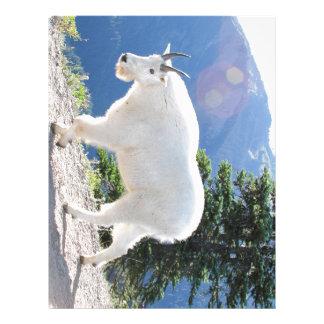 Mountain Goats Letterhead