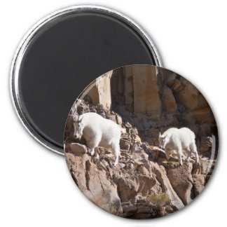 Mountain Goats Magnet