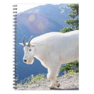 Mountain Goats Notebook