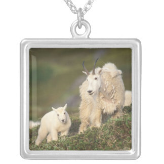 mountain goats, Oreamnos americanus, mother and 2 Silver Plated Necklace