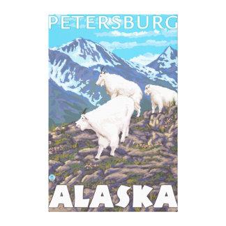Mountain Goats Scene - Petersburg, Alaska Canvas Print
