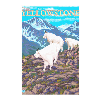 Mountain Goats Scene - West Yellowstone, MT Canvas Print