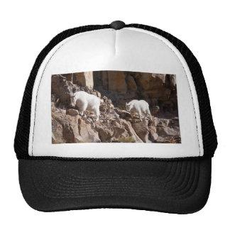 Mountain Goats Trucker Hat