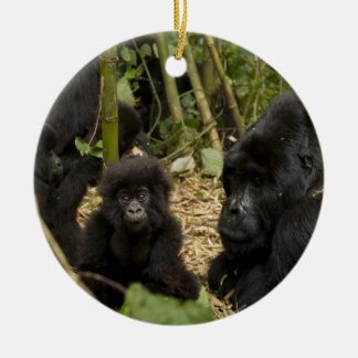 Mountain Gorilla, adult with young 2 Ceramic Ornament