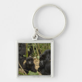 Mountain Gorilla, adult with young 2 Keychain