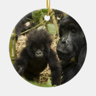 Mountain Gorilla, adult with young Ceramic Ornament