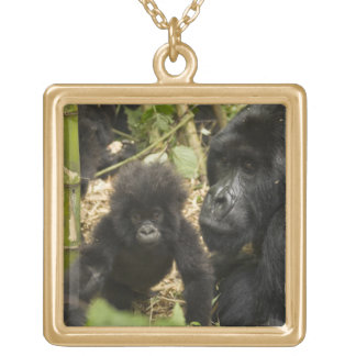 Mountain Gorilla, adult with young Gold Plated Necklace