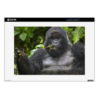 """Mountain Gorilla and aging Silverback 15"""" Laptop Skin"""