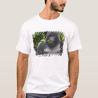 Mountain Gorilla and aging Silverback T-Shirt