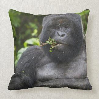 Mountain Gorilla and aging Silverback Throw Pillow
