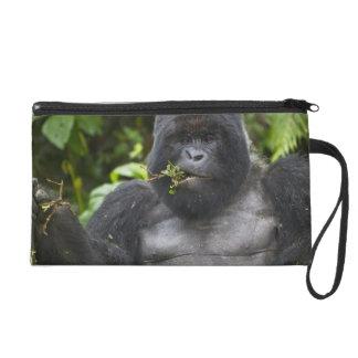 Mountain Gorilla and aging Silverback Wristlet Purse