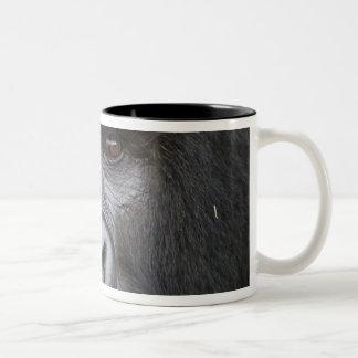 Mountain Gorilla and Silverback 2 Two-Tone Coffee Mug