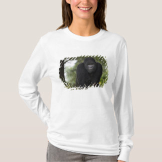 Mountain Gorilla and Silverback 3 T-Shirt