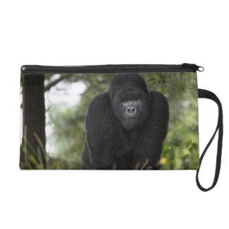 Mountain Gorilla and Silverback 3 Wristlet Purse