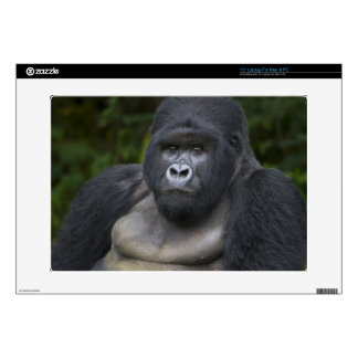 "Mountain Gorilla and Silverback 4 Skin For 15"" Laptop"