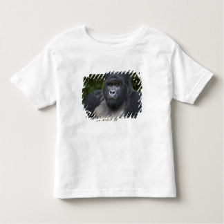 Mountain Gorilla and Silverback 4 Toddler T-shirt