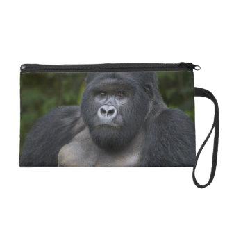 Mountain Gorilla and Silverback 4 Wristlet