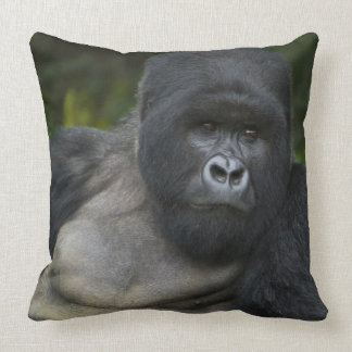 Mountain Gorilla and Silverback 5 Pillows