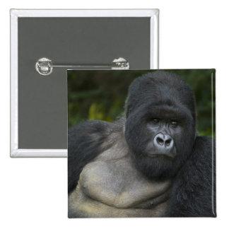 Mountain Gorilla and Silverback 5 Pinback Button