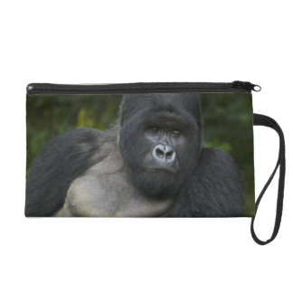 Mountain Gorilla and Silverback 5 Wristlet Purse