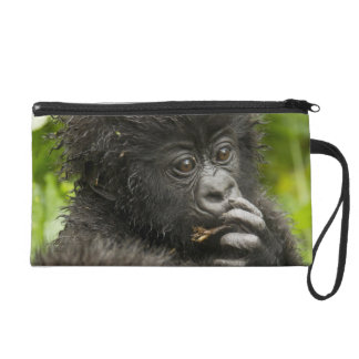 Mountain Gorilla, baby riding on mothers back Wristlet Clutch