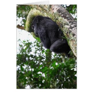 Mountain Gorilla Deep in thought Card
