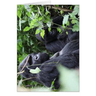 Mountain Gorilla - Family Portrait Card