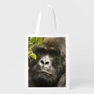 Mountain Gorilla, Gorilla beringei beringei, Grocery Bags