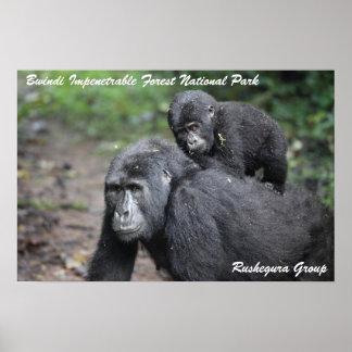 Mountain Gorilla/ Mother & Baby Poster