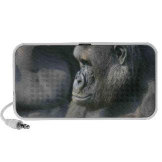 Mountain Gorilla Speakers