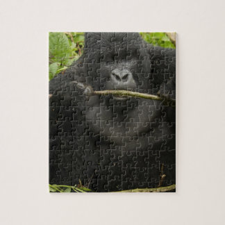 Mountain Gorilla, using tools Jigsaw Puzzle