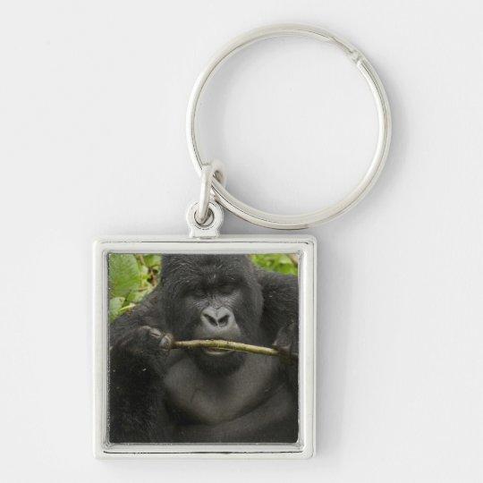 Mountain Gorilla, using tools Keychain
