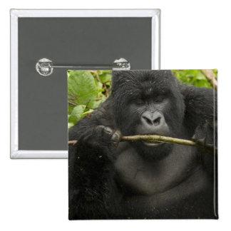 Mountain Gorilla, using tools Pinback Button
