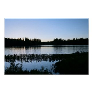 Mountain Lake, Coyote, Sunset (2 of 3)