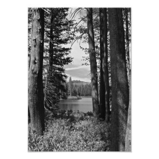 Mountain Lake, Forest, Black and White (portrait) Poster