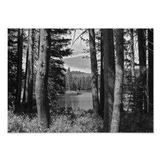Mountain Lake, Forest, Black and White Poster