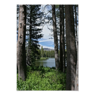 Mountain Lake, Forest (portrait) Print