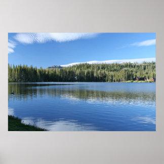 Mountain Lake, Goose Print