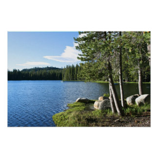 Mountain Lake, Pine Trees, Boat Poster