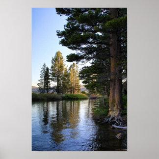 Mountain Lake, Pine Trees, Island Poster