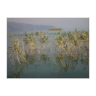 """Mountain Lake Reeds"" Canvas Print"