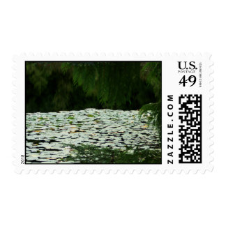 Mountain Lake Water Lilies Postage Stamps