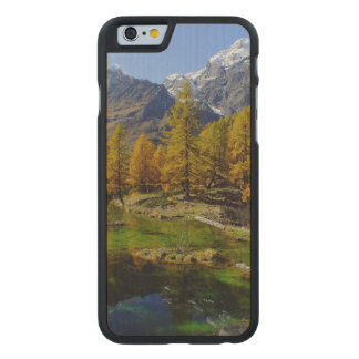 Mountain Lake Woods Scene Carved® Maple iPhone 6 Case