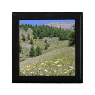Mountain Landscape Gift Box
