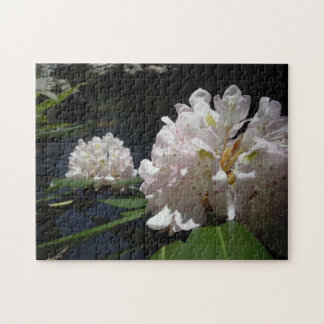 Mountain Laurel by a Creek Puzzle